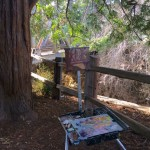 "My easel set under ""El Palo Alto"" historic redwood tree."