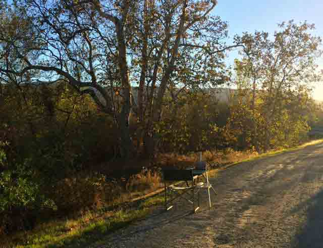 My easel on Guadalupe Creek trail.